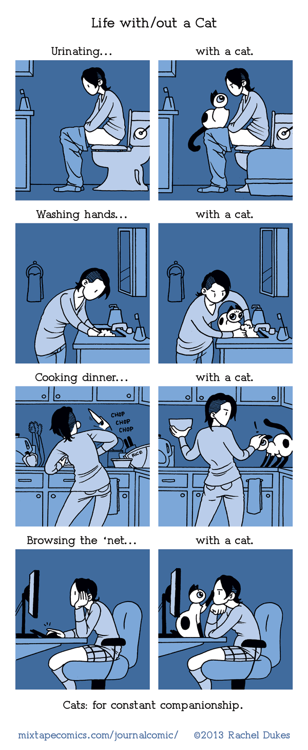 Life with/out a Cat
